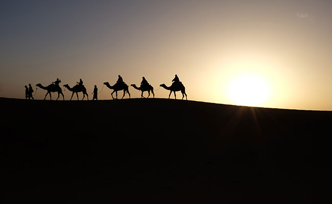 Silhouettes of a caravan